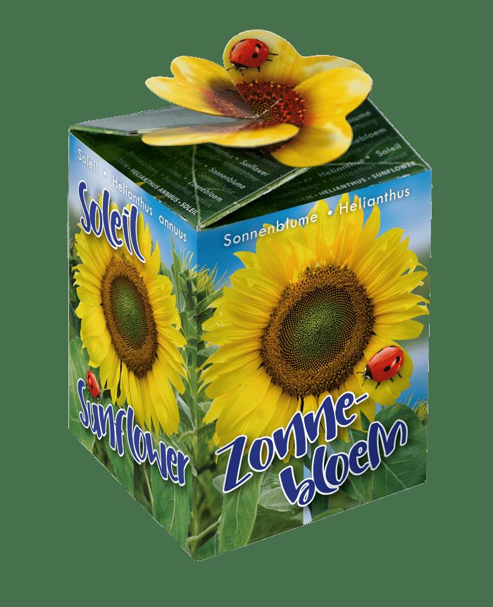 zonnebloem zaadjes greengift doosje