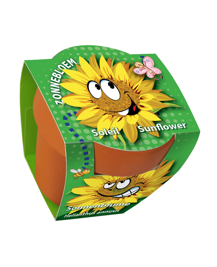 terracotta pot zonnebloem zaden