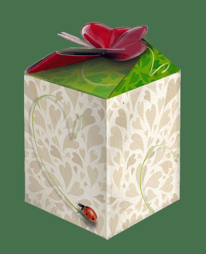 blanco greengift doosje