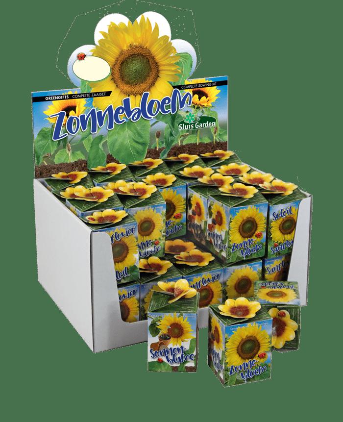 zonnebloemen greengift doosjes showdoos