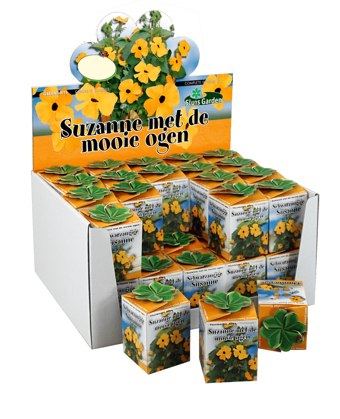 showdoos greengift suzanne met de mooie ogen